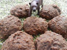 The Teddy Bear Mitt - Madame Labriski Dog Food Recipes, Cookie Recipes, Molasses Cookies, Plain Yogurt, Biscuit Cookies, Energy Bars, Baking Soda, Healthy Snacks, Healthy Recipes