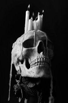 Dark forest, glow of the lake, an eternal dance of death Arte Horror, Horror Art, Dark Fantasy Art, Dark Art, Skull Reference, Human Reference, Gothic Aesthetic, Human Skull, Human Human