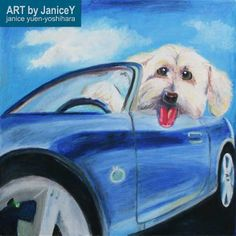 Dog painting dog art commission pet painting, Opus, a Bichon Mix https://www.etsy.com/shop/ARTbyJaniceY