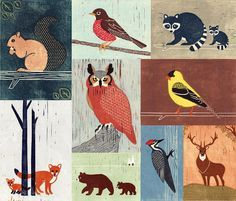 Woodland Animals, Birds, Owl, Fox, Raccoon, Squirrel, Robin, Bear, Woodpecker, Colorful Collage Linocut Illustration Art Print 14 x 12