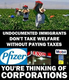 Undocumented Immigrants don't take Welfare without paying Taxes. You're thinking of Corporations. #ImmigrationAction