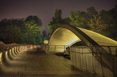 """Мост """"Волны Хендерсона"""" в Сингапуре"""