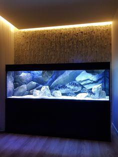 Explore the world of unique aquarium backgrounds. Fish Aquarium Decorations, Wall Aquarium, Cichlid Aquarium, Aquarium Setup, Home Aquarium, Aquarium Design, Aquarium Fish Tank, Cool Fish Tanks, Saltwater Fish Tanks