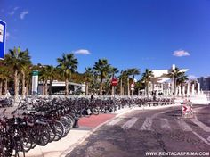 Bikes for Rent ready for the Cruises arriving at Malaga Port in November. What a beautiful day !!