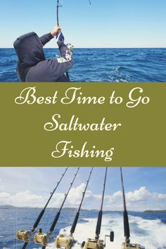 These are the two best times for saltwater fishing during the day. So what makes the morning one of the best times to go fishing? Best Badminton Racket, Compare Life Insurance, Samurai Wallpaper, Sweet Cocktails, Salmon Fishing, Comic Movies, Free Tips, Fishing Humor, Easy Food To Make