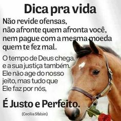 Portuguese Quotes, Faith In God, Word Of God, True Quotes, Life Lessons, Wise Words, Quotations, Thoughts, Humor