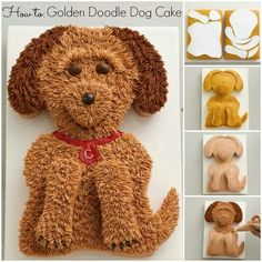 Golden retriever how to cake