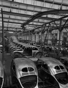 vintage everyday: Scene at Volkswagen's Main Plant, Wolfsburg, Germany, July 1951