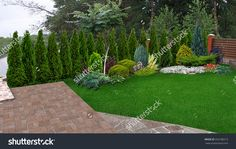 Garden Design with Landscaping Evergreen Privacy Screen, d Render Stock Photo  with Landscape Design Ideas Front Of House from shutterstock.com