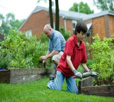 Garden Projects, Garden Tools, Grass Seed Mat, Lawn And Garden, Home And Garden, Garden Leave, Things To Do At Home, Plantation, Lawn Care