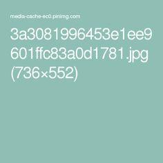 3a3081996453e1ee9601ffc83a0d1781.jpg (736×552)