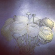 """1,736 Likes, 14 Comments - Nick Knight (@nick_knight) on Instagram: """"Ranunculus at SHOWstudio."""""""