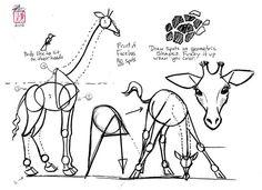 Dessiner une girafe 1612  comment dessiner