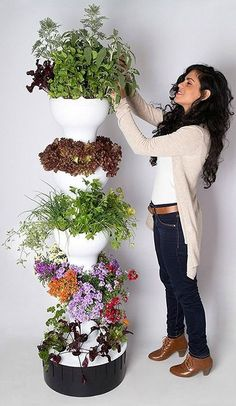 The Foody 8 Hydroponic Tower is the ideal system for outdoor hydroponic growing.