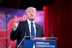 The dribblings of Donald Trump