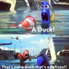 Finding nemo, we all love it