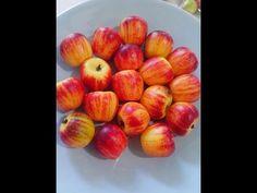 Fazendo massa do docinho e pintando a maçãzinha - YouTube