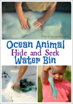Ocean Animal Hide an
