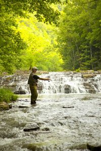 Fly Fishing in Virginia - Virginia Is For Lovers