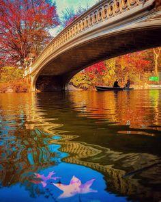 "ig_nycity: ""presents  I G  O F  T H E  D A Y  P H O T O | @desi_photo T H E M E | Central Park F E A T U R E D  T A G | #ig_nycity  M O D | @naturegirlnyc  T E A M | @killahwave @jamescadavillo @naturegirlnyc @randypearlstein @Nycbuildings @beholdingeye @davidlacombenyc @lisarani @fullmetalphotography  ______________________________  M A I L | igworldclub@gmail.com  S O C I A L | Facebook  Twitter  M E M B E R S | @igworldclub_officialaccount  ______________________________  C O U N T R Y  R…"