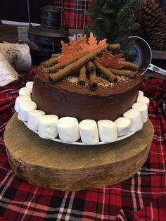 Campfire Cake from a Rustic Camping Birthday via Kara's Party Ideas   KarasPartyIdeas.com (25)