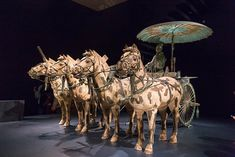 These horses and chariot are a replica of those unearthed at the tomb of the Emperor as part of the Terracotta Warriors exhibit at Virginia Museum of Fine Arts. Museum Of Fine Arts, Emperor, Exhibit, Terracotta, Warriors, Camel, Virginia, Fair Grounds, Horses
