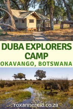 Duba Explorers Camp for an Okavanga Delta safari, Botswana - Roxanne Reid Kruger National Park, National Parks, Dugout Canoe, Okavango Delta, Slow Travel, Luxury Camping, African Safari, Africa Travel, Places To See
