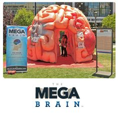 Interactive Exhibit For Healthcare & Hospital Events - Interactive Brain | Medical Inflatables