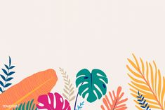 Website Design Tips Anyone Can Understand And Use Powerpoint Background Design, Background Design Vector, Tropical Background, Beige Background, Laptop Wallpaper, Wallpaper Pc, Summer Wallpaper, Tropical Design, Free Illustrations