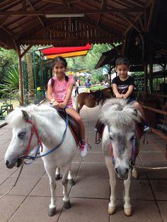 Pony ride at the zoo...