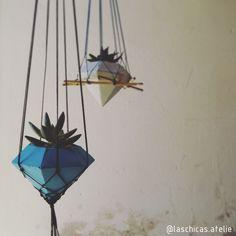 Fim de tarde  . #concreto #concrete #cimento #argamassa #vaso #cachepot #suculentas #suculent #plantas #plants #suculentslover #diamante #diamond #bauru #baurucity #brasil #estadodesaopaulo #laschicasatelie . https://www.instagram.com/laschicas.atelie/
