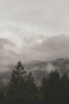 Free stock photo of mountains, clouds, forest, trees