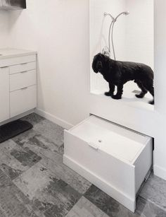 95 best design for pets images on pinterest in this mudroom theres a custom built dog wash station that has a step solutioingenieria Choice Image