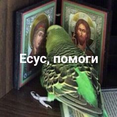 Top Tutorial and Ideas Memes Funny Faces, Stupid Memes, Dankest Memes, Funny Humor, Reaction Pictures, Funny Pictures, Hello Memes, Happy Memes, Russian Memes
