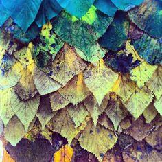 Leaf blanket texture  Land Art  Alex Birchall