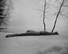 Minkkinen, Arno