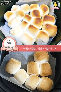 이것만 알면 만렙! 에어프라이어 꿀맛 레시피 총집합 | 1boon Hot Dog Buns, Hot Dogs, Air Fryer Recipes, Korean Food, Food And Drink, Bread, Cooking, Breakfast, Healthy