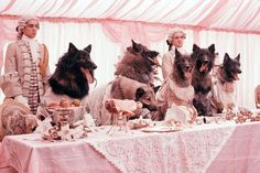 Era uma vez...: A Companhia dos Lobos
