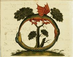 Snake women, dragons and other esoteric imagery from the alchemical manuscript 'Clavis Artis' Alchemy, Ouroboros, Esoteric Art, A Discovery Of Witches, Spiritus, Mystique, Ancient Symbols, Ancient Egypt, Medieval Art