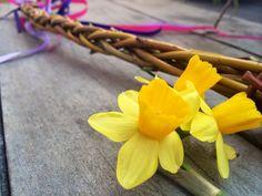 Domácnost   . . . 365 věcí, které si můžete udělat doma sami Samos, Plants, Plant, Planets