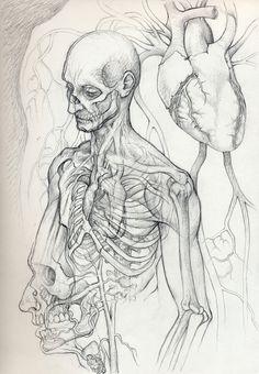 Vampire Anatomy 1 by *DanielGovar on deviantART