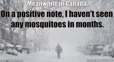 Super Funny Life Quotes For Women Hilarious Jokes 66 Ideas Canadian Memes, Canadian Things, Canadian History, Canadian Humour, Canada Funny, Canada Eh, Canada Jokes, Funny Memes About Life, Funny Jokes