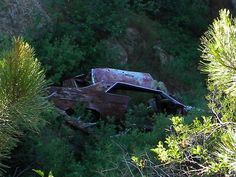 wrecked cars in trees | Old Car Wreck in Trees - Free Photo