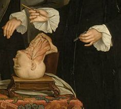 Dissection detail from The Anatomy lesson by Tibout Regters, 1758. See full image here: http://www.pinterest.com/pin/278589926924176262/