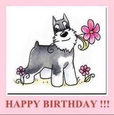 Idea for birthday wishes Put the message at the bottom. Happy Birthday Dog Meme, Happy Birthday Photos, Happy Birthday Girls, Dog Birthday, Happy Birthday Wishes, Birthday Greetings, Birthday Blessings, First Birthday Presents, Birthday Cards