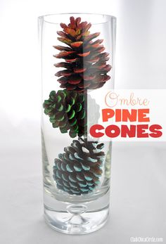 A simple Fall craft- Ombre Painted Pine Cones