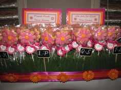 Photo 3 of 20: Fuschia & Orange Daisy Theme / Birthday Harpers 1st Birthday Brunch   Catch My Party