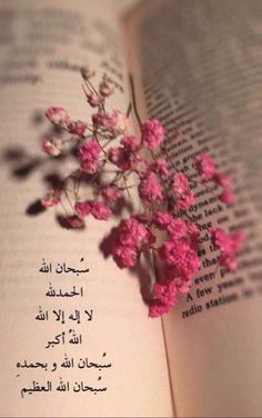 La prière surérogatoire en Islam - Al Fiqh Quran Quotes Love, Beautiful Islamic Quotes, Allah Quotes, Islamic Inspirational Quotes, Muslim Quotes, Arabic Quotes, Qoutes, Islamic Images, Islamic Messages