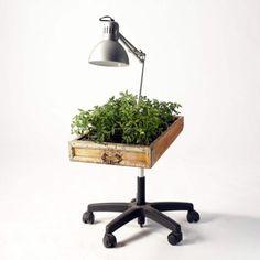 repurposed rolling desk chair legs into garden delights!