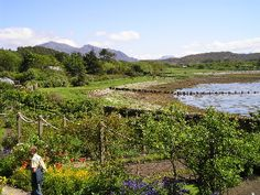 Inverewe Gardens, located on the west coast close to Poolewe in Wester Ross, lies in a sheltered bay warmed by the Gulf Stream.